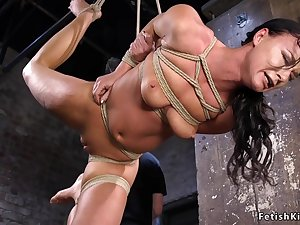Bald Pussy twat hogtied darkhaired fingered