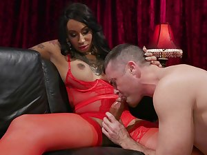 A gay person craves for a dick plus shemale Honey Foxxx fucks him